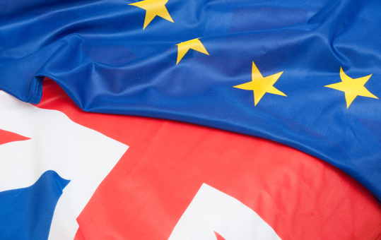 Brexit and the BVCA